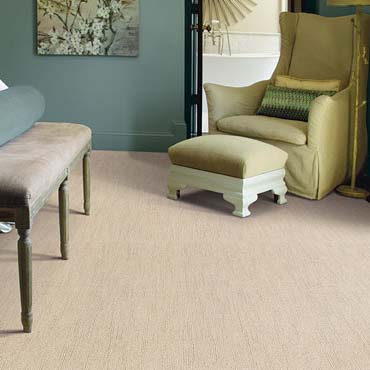Caress Carpet by Shaw in Madison, NJ