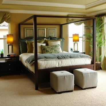 STAINMASTER® Carpet | Madison, NJ